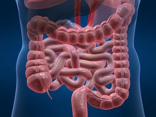 bệnh viêm đại tràng co thắt là gì